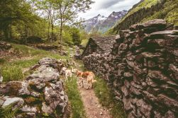18-05-11 Valle Verzasca-2201